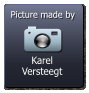 Karel Versteegt  Picture made by