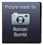 Roman Bumbi  Picture made by
