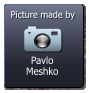 Pavlo Meshko  Picture made by