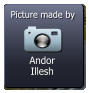 Andor Illesh  Picture made by